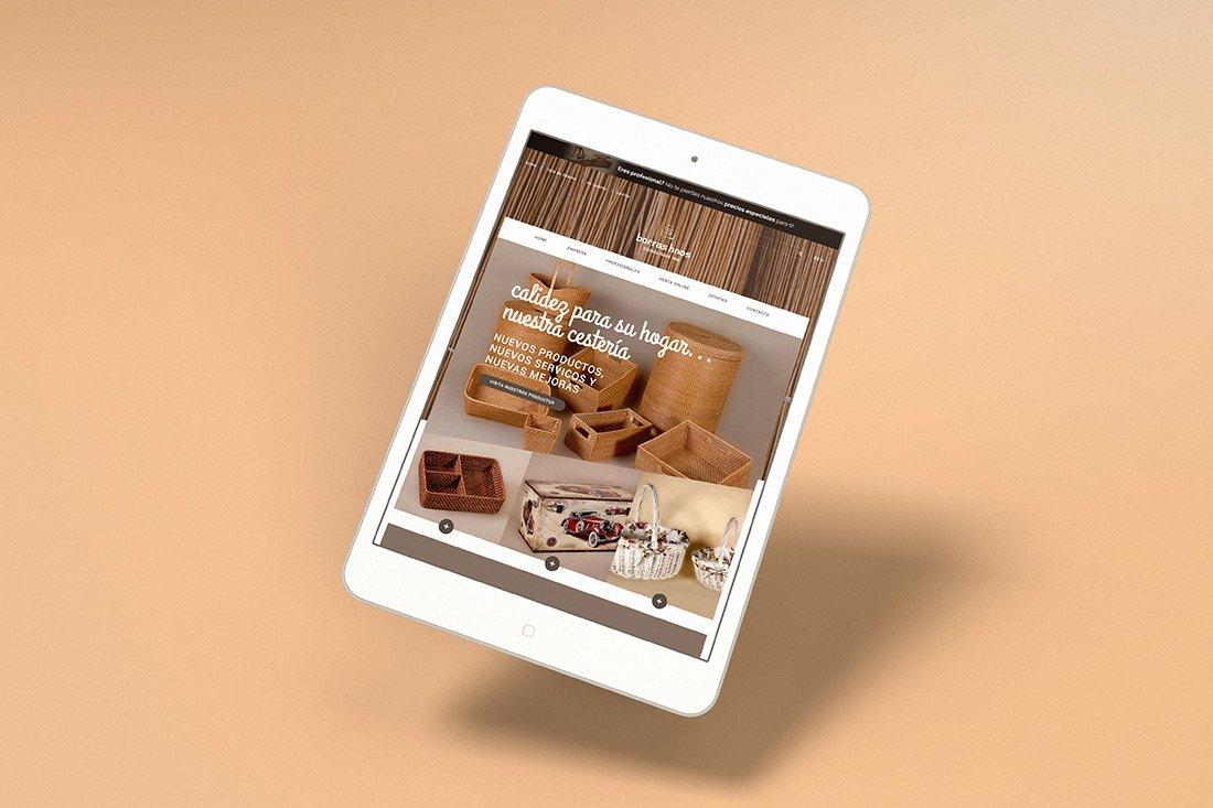 Diseño tienda online valencia borrashnos